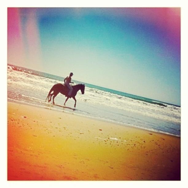 #Cadiz #SanLucardeBarrameda #Caballo #Playa