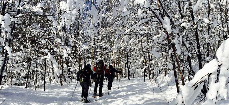 Paysages enchanteurs, bonheur et air pur à Saint-Donat avec hébergement et lunchs santé pour vos randonnées! #etoilest-donat #skidefond #raquettes #hiver #sportsd'hiver #activitésfamiliales #st-donat #lanaudière #trail #pleinair