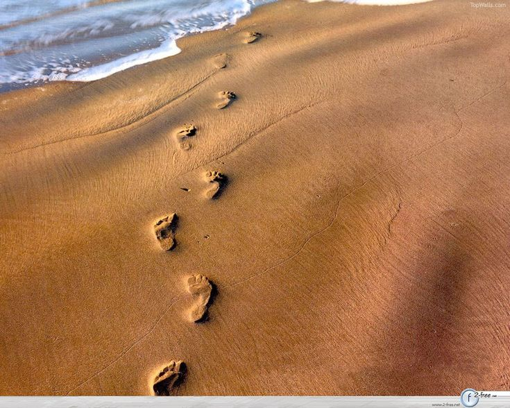 footprints: Footprints In The Sand, Sands, Footprints The, Google, Life, Quotes, Faith, Beach, Footprints In Sand