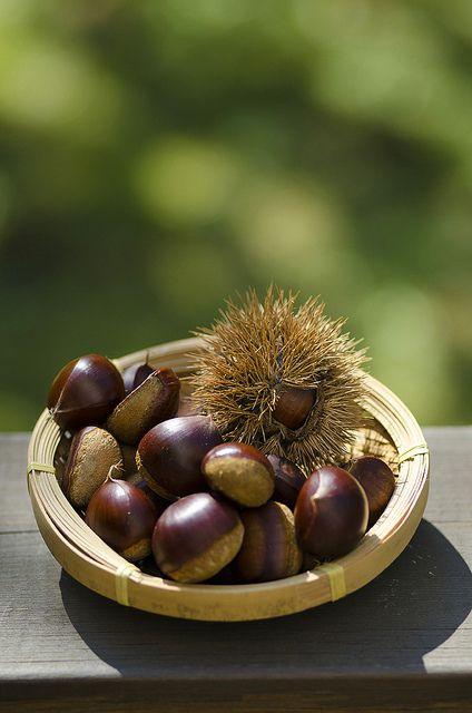 Japanese chestnuts 栗