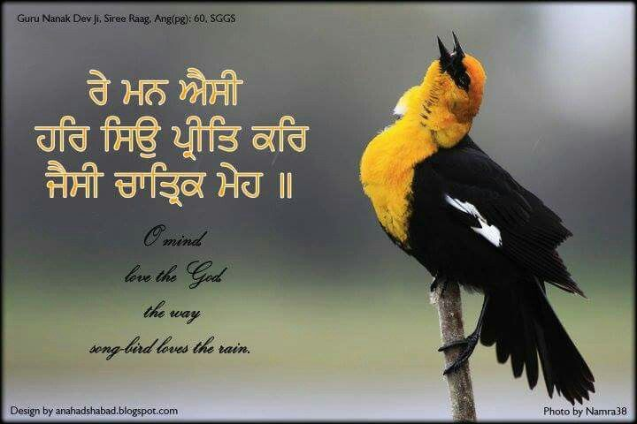 Text from guru granth sahib ji....