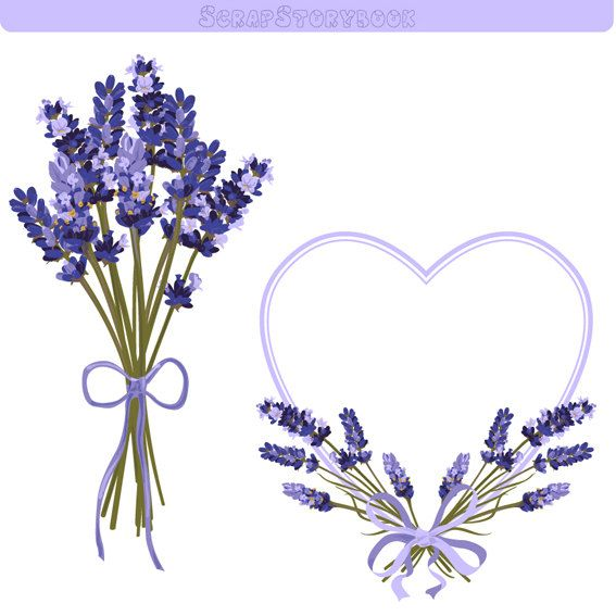 Lavender Flower Frame and Clipart 300 dpi PNG by WatercolorMarket