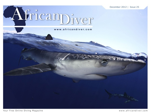 Issue 25: Download for free. http://africandiver.com/index.php/magazine/download-issues