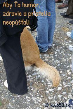 Aby ťa humor, zdravie a priatelia neopúšťali! zdroj: www.klub50.sk