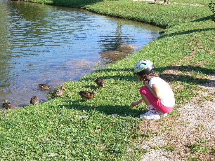 Giocheremo a zappare, seminare e raccogliere i prodotti dell'orto e sfideremo le altre famiglie tra minigolf, tuffi in piscina e tante attività per i nostri piccolini. http://www.jonas.it/vacanza_montagna_bimbi_1297.html