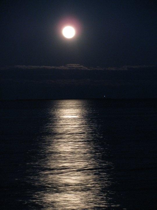 Moon lit walk. . .@ The West Haven Beach