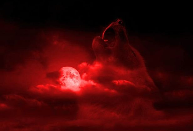 White Wolf : Rare Blood Moon: Year's Biggest Super Moon Goes Blood Red in Full Eclipse  Sept. 27th-28th 2015
