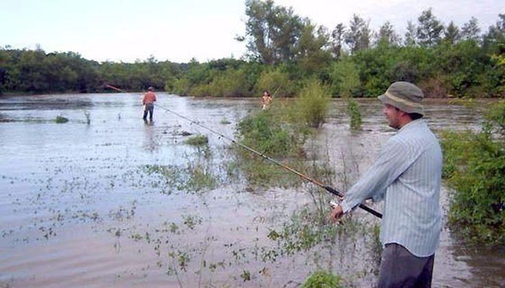 Los permisos de pesca se tramitan desde ahora en Grand Bourg: El punto de venta de carnets habilitantes se trasladó al edificio donde…