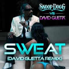 Seriously awesome remix!  Sweat (David Guetta Remix) by Snoop Dogg