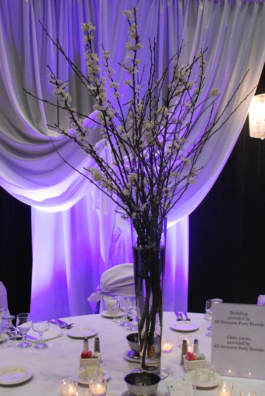 Pussy Willow Centerpieces 90