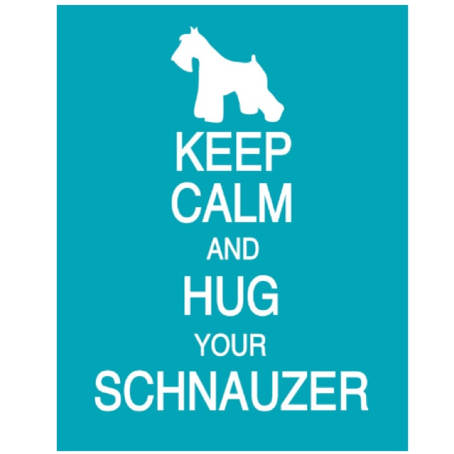 Schnauzer Love!: Keep Calm Posters