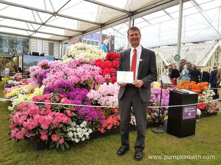 David Millais, Chairman of the RHS Rhododendron, Camellia and Magnolia Group…