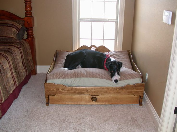 best 25+ great dane bed ideas on pinterest | wood dog bed, rustic