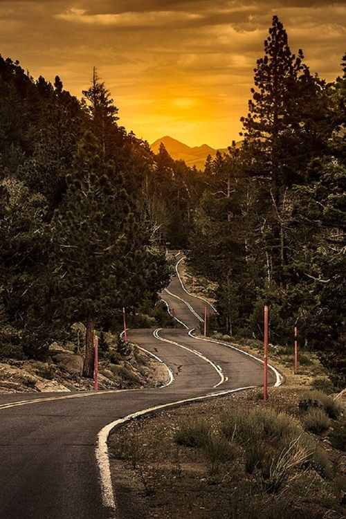 Sonora Pass, in the Sierra Nevada, California by Pe Pe