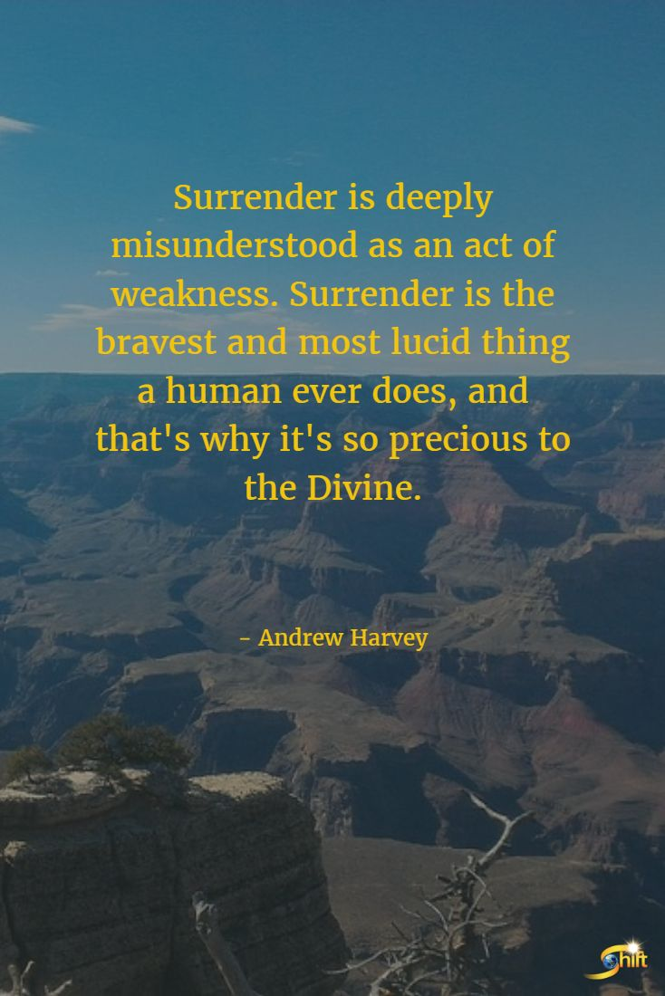 """Surrender is deeply misunderstood as an act of weakness. Surrender is the bravest and most lucid thing a human ever does, and that's why it's so precious to the Divine."" - Andrew Harvey  http://theshiftnetwork.com/?utm_source=pinterest&utm_medium=social&utm_campaign=quote"
