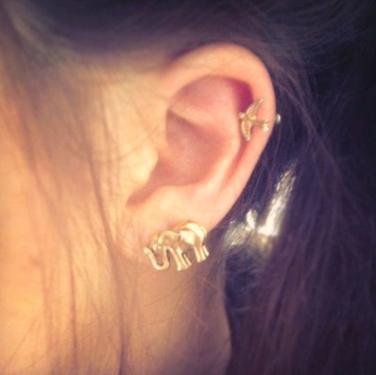 125 best Cute Ear Piercing Pictures/Videos images on ...