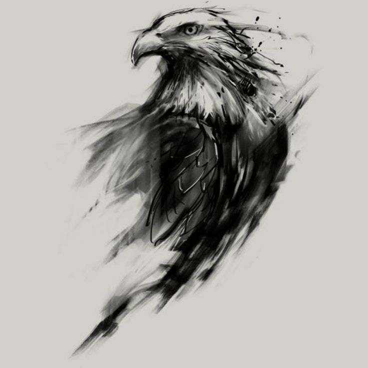 1000 Ideas About Eagle Tattoos On Pinterest Tattoos Tribal within Top tattoo sty