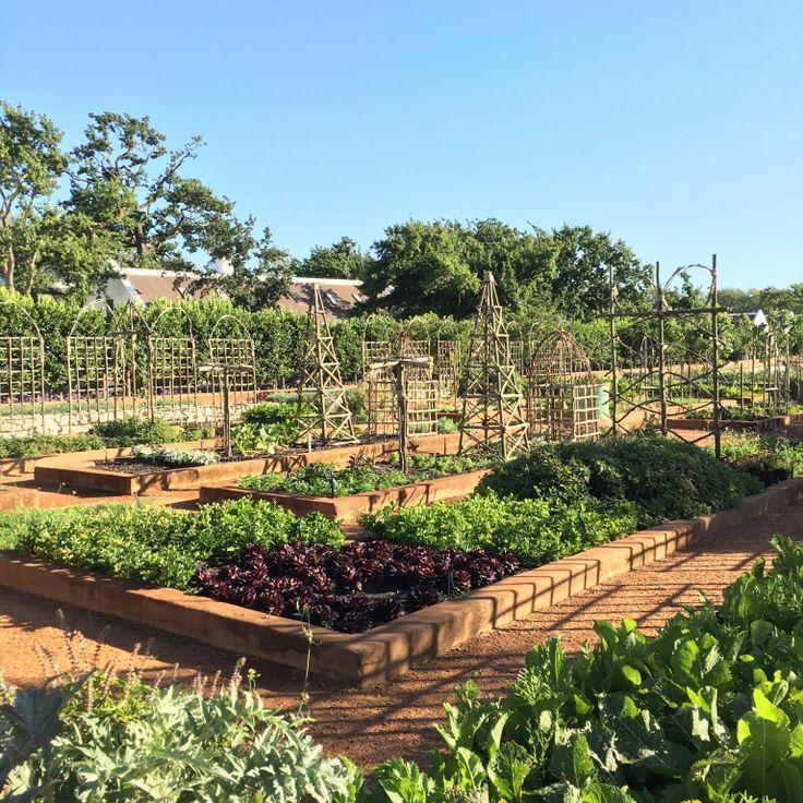 Potager Garden Blogs: Babylonstoren_afrique_du_sud_voyage_blog_ailleurs_is