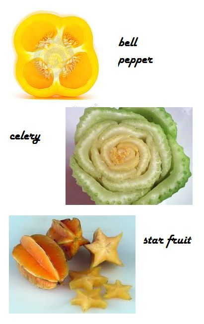 cut veggies and fruit for a great art project! dip in paint to make cool designs! easy to hold in a kids hands! fun shapes!