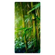 Bambusz, bambuszágak falikép