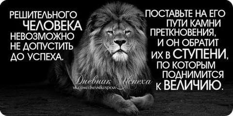 мотивационные картинки для успеха: 16 тыс изображений найдено в Яндекс.Картинках