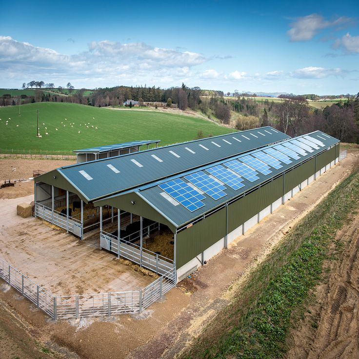 Prefabricated Steel Structure Poultry House Chicken Farm