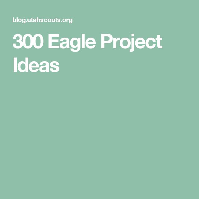 300 Eagle Project Ideas                                                       …