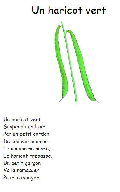 Un_haricot_vert