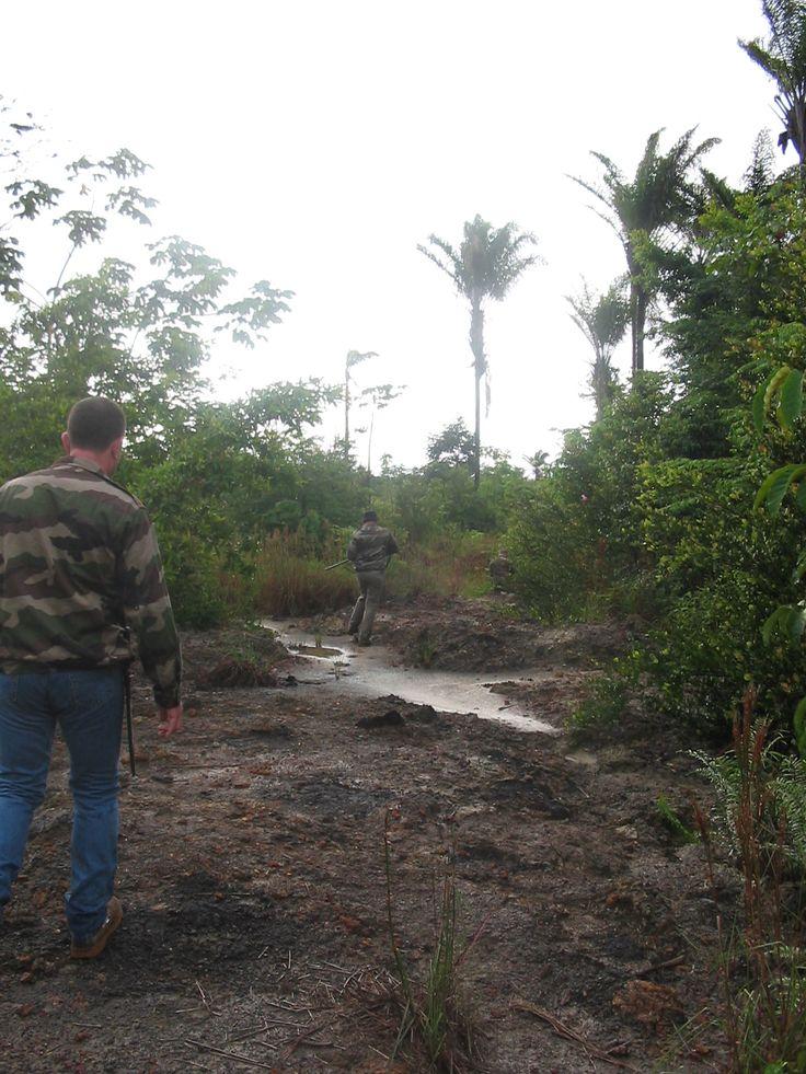 Chasse au gabial en Guyane