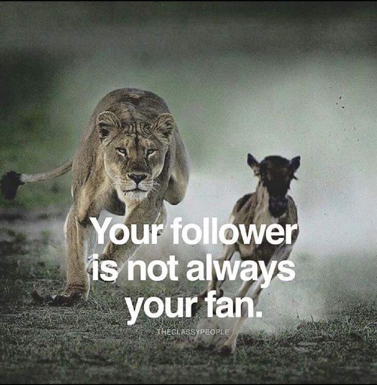 Your follower is not always your fan.
