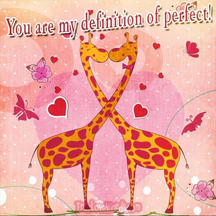 You are my definition of perfect!