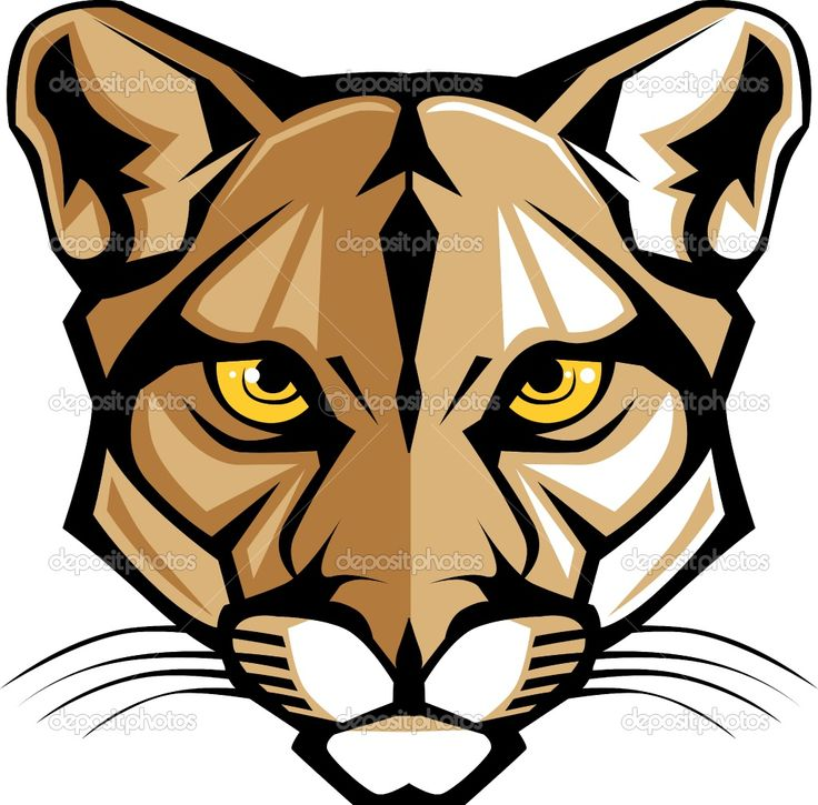 Cougar Face Line Drawing : Cougar head clip art panther mascot vector