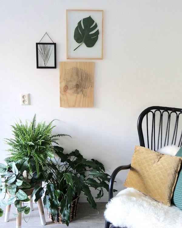 KARWEI | Maak ook jouw eigen botanische wand met deze makkelijk te volgen handleiding
