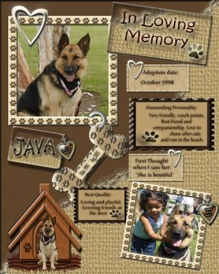 Lovely colours used here. Complement the colour of the German Shepherd. I think it's nice that someone made a scrapbook page in memory of their pet.