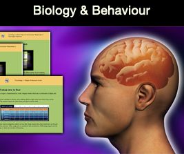 Psychology & Neuroscience Programs
