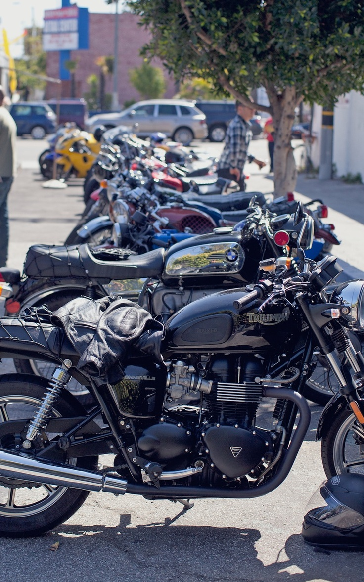 .........Bikes 3, Cafes, Custom Motorcycles, Vintage Triumph Motorcycles, Motorcycles Riding, Motorbikes Gallery