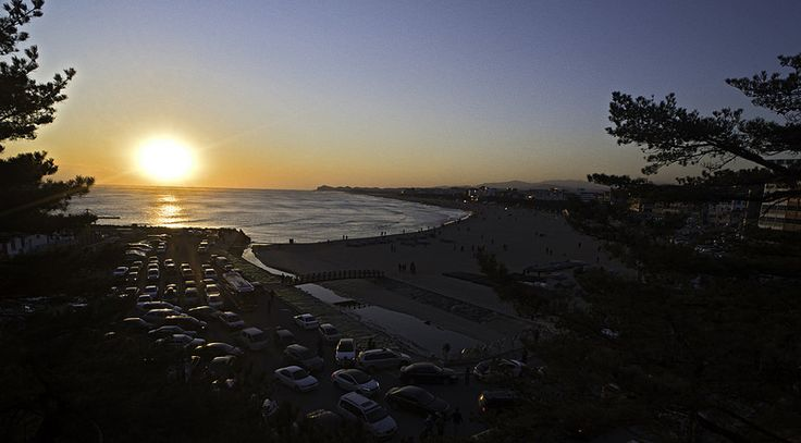 Naksan Beach Sunrise:  Parking madness at Naksan Beach for the 1st sunrise of 2015 :)  http://www.mattmacdonaldphoto.com