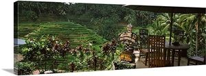 Restaurant near rice field, Rice Terrace Cafe, Tegalalang, Bali, Indonesia