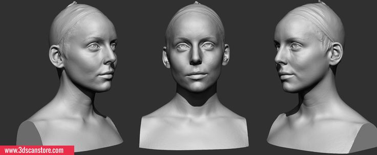 Head_Scanning_04_Female011.jpg (JPEG Image, 2113×872 pixels)