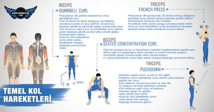 Temel Kol Hareketleri ve Dikkat Edilmesi Gereken Noktalar  #supplementlercom #supplementler #egzersiz #antrenman #spor #vücutgeliştirme #bodybuilding #biceps