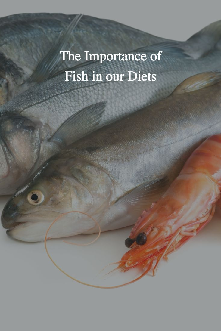 Freshwater fish health benefits - What Are The Health Benefits Of Fish And Other Seafood What Types Of Fish Should