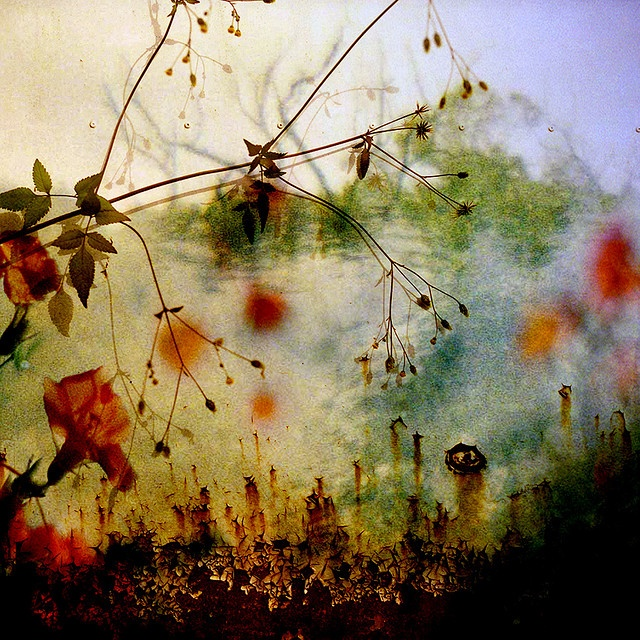 A great example of what you can do with colour and abstract photography.
