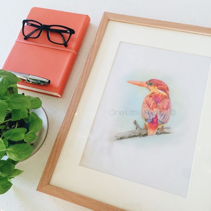 OneLittleRascal - ✖ KING FISHER ✖ Coloured pencil drawing.  Limited edition prints. Individually signed and numbered.  Available for purchase in a range of sizes as a Giclée Fine Art print.