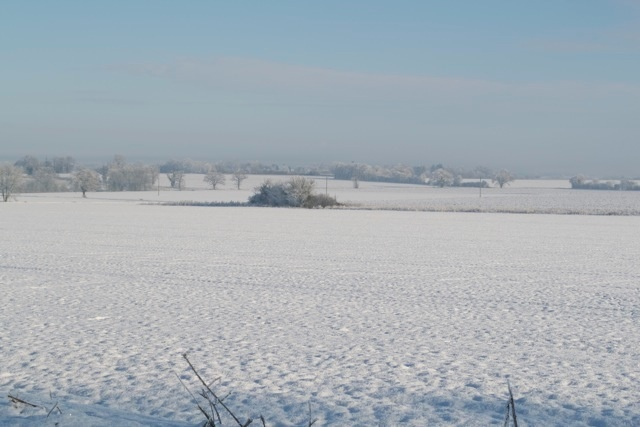 Looking north towards Woolpit.