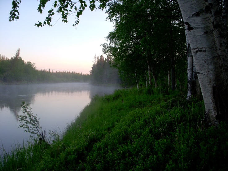 Midsummer night in Lapland - with Midnight sun and no mosquitos!
