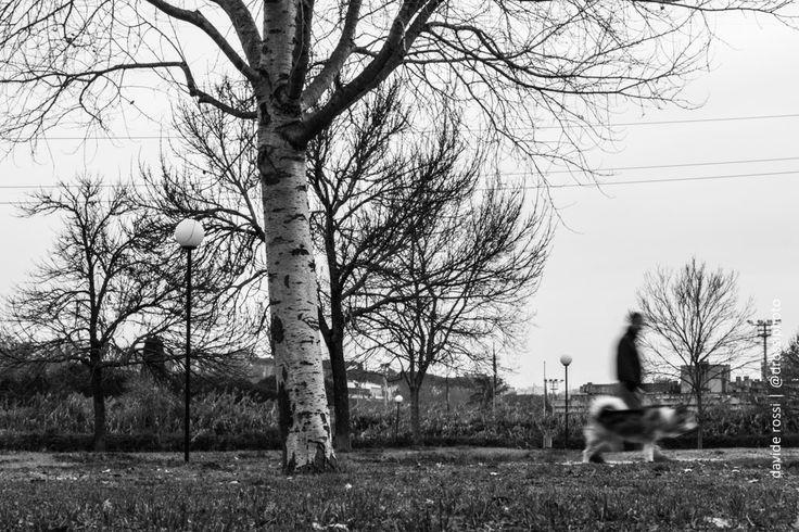 Attraversando il parco | #Fotografia #streetphotography