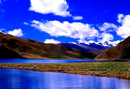 You'd definitely feel close to heaven on the Tibetan plateau which is 5000M above sea level.