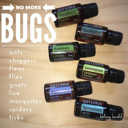 25 Best Ideas About Bug Spray Recipe On Pinterest