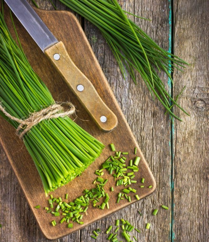 10 Benefits Of Growing Chives Chive Seeds Growing Chives Herb Seeds