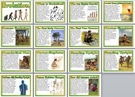Set of 15 printable posters that look at human evolution.  Includes: Title Page, What is Evolution? Who was Charles Darwin? Darwin's theory of Natural Selection, Human Evolution, The First Early Humans, The First True Humans, Homo-Erectus, Neanderthal Man, Homo-Sapiens, Standing Upright (2 posters), Problems with Standing Upright, Human Skeleton Changes, How did humans evolve?